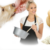 DIY Dog Biscuit Recipes: Homemade & healthy dog biscuit recipes your dog will love!